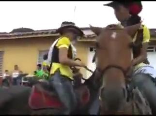 Miga segura o cavalo