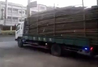 Descarregando madeira